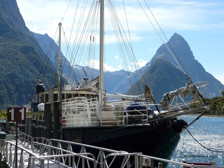 Milford Wanderer, Milford Sound