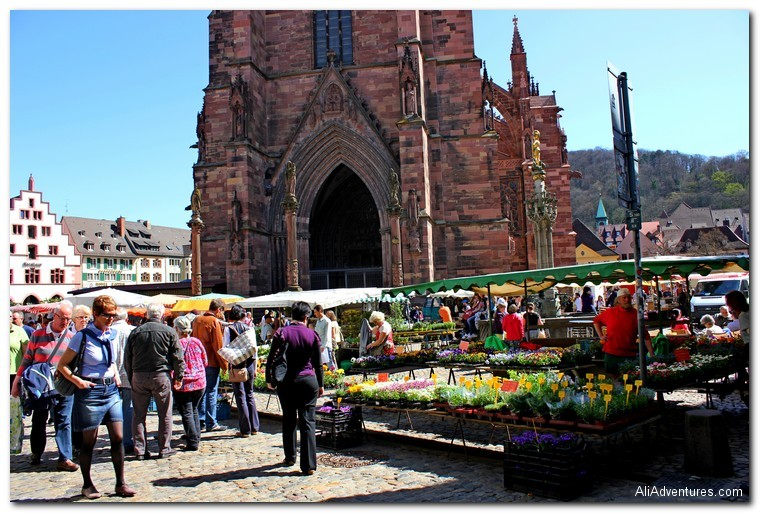 Freiburg, Germany photos