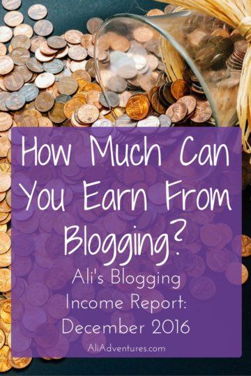 bloggers income report much money make