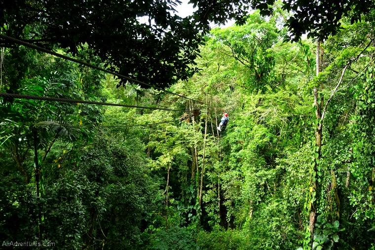 Bocas del Toro Panama zip lining